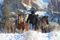 Brian-and-horses-in-snow-for-Photos